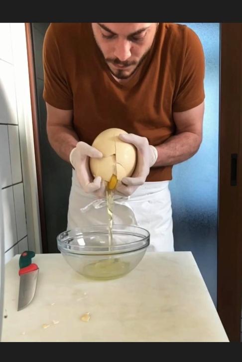 apertura uovo di struzzo il cascinetto