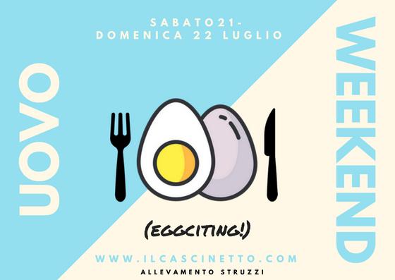 uovo di struzzo evento il cascinetto
